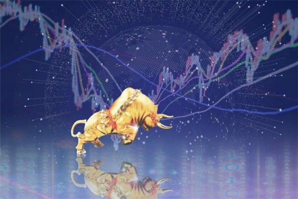 如何才能购买到新上市的公司股票?