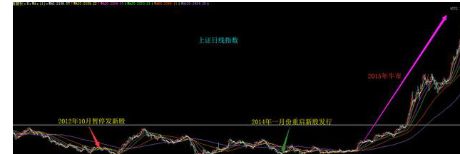 暂停IPO.png